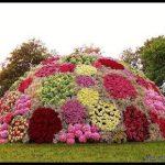 En güzel çiçek süslemesi