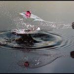 En güzel su resimler