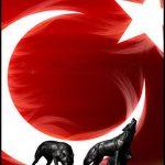 Türk bayrağı kurt
