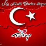 Türk bayrağı   15