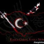 Türk bayrağı   19