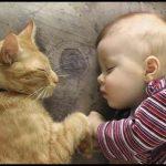 Bebek ve kedi resimleri
