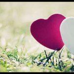 Aşk Kapak Fotoğrafları
