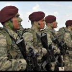 Bordo bereli  ordusu