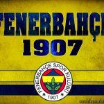 Fenerbahçe fotoğrafları   11