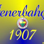 Fenerbahçe fotoğrafları   14