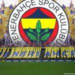 Fenerbahçe fotoğrafları   15