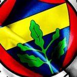 Fenerbahçe fotoğrafları   20