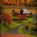 Sonbahar manzara resimleri