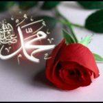 Gül muhammed