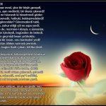 Gül resimli şiir