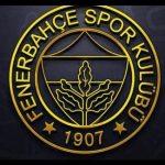 Fenerbahçe logoları