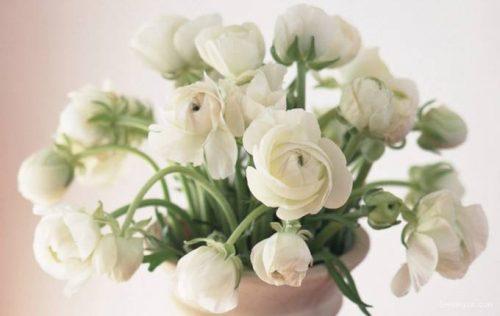 Yapay Çiçek Gönder